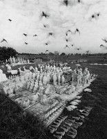 Birds Flying ove Statues, 1979